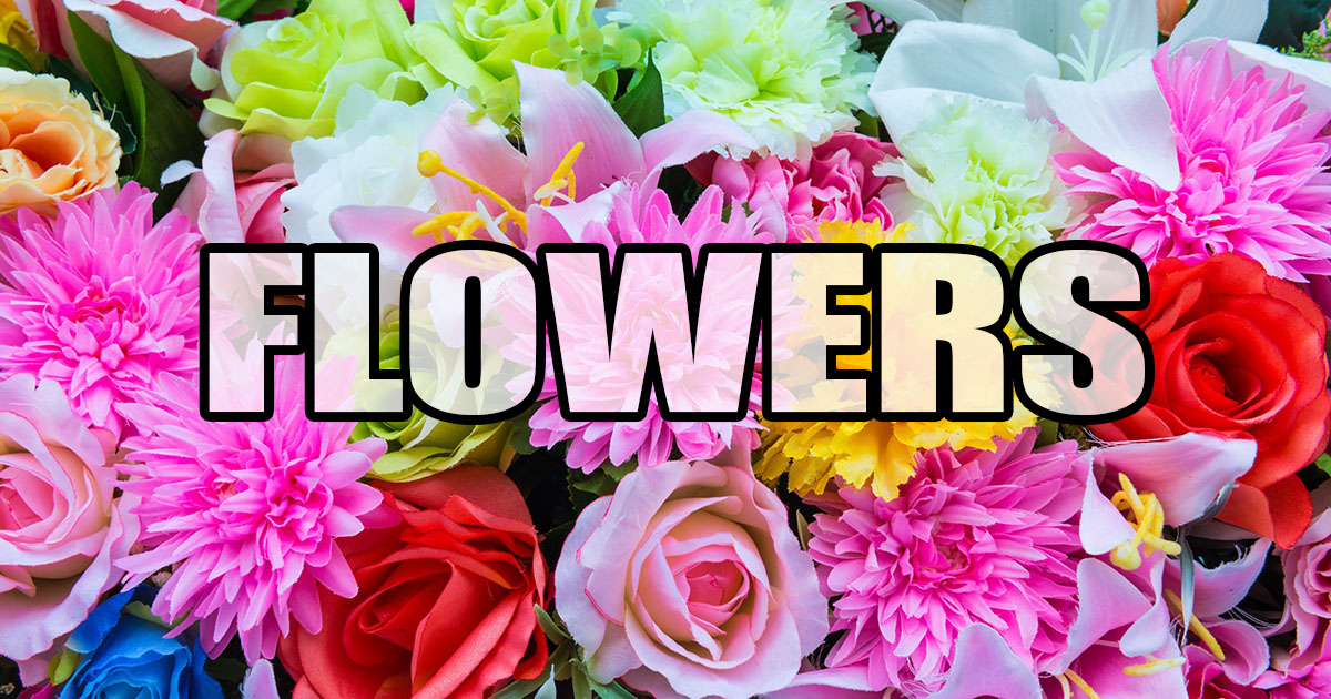 flowers OpenGraph Image
